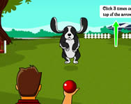 Dog training j�t�k