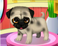 Paws to beauty 3 puppies and kittens online játék