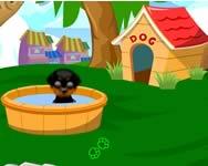 Sweetdog online játék